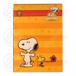 Snoopy kinderbestek rvs 4-delig